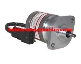 Actuator ALN190-F04-12 hoặc -24